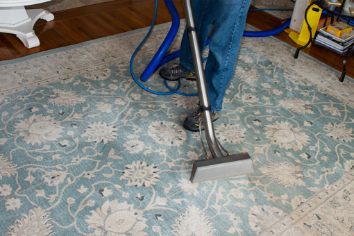 Rash & Son Best Area Rug Cleaning