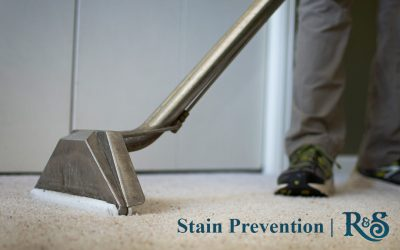 Stain Prevention