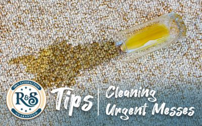 Quick Tips for Cleaning Urgent Messes